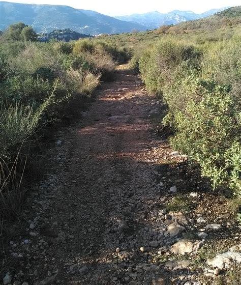 promener chien 224 l aire michel 224 nord falicon