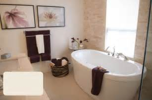 bathroom paints ideas how to choose bathroom paint colors 03 brown hairs