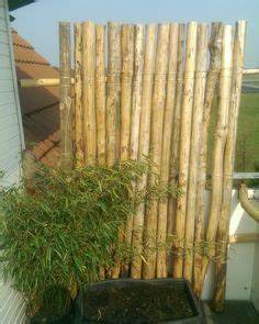 Bambus In Kübeln : die 25 besten ideen zu windschutz balkon auf pinterest ~ Michelbontemps.com Haus und Dekorationen