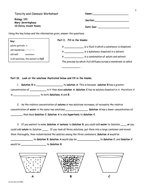 17 Best Images Of Osmosis Worksheet Answers  Osmosis And Tonicity Worksheet Answer Key, Osmosis