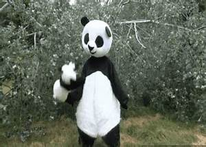 Onision Panda GIFs - Find & Share on GIPHY
