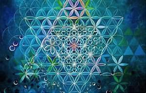 Was uns die Natur über Heilige Geometrie lehren kann ...