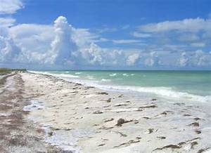 the ramblin39 tampa travel guide and trip planner With honeymoon island state park florida