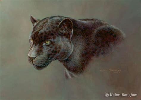 all black jaguar quot shadow hunter black jaguar quot originals all artwork