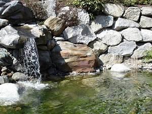 Gartenteich Mit Wasserfall : wasser im garten garten wammes ~ Orissabook.com Haus und Dekorationen