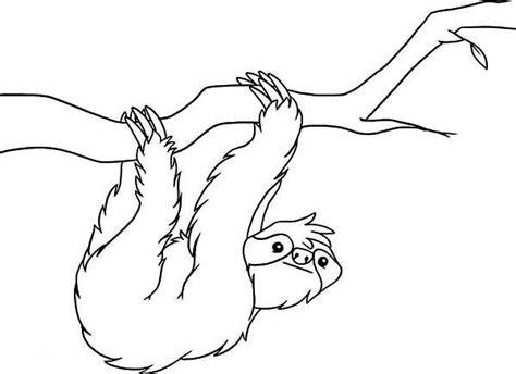 sloth coloring page  kids color luna