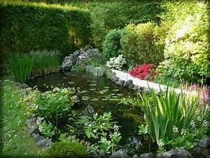 univers aquatique conseils en ligne aide a la With plan de bassin de jardin 2 lentretien du bassin de jardin mois par mois dossier