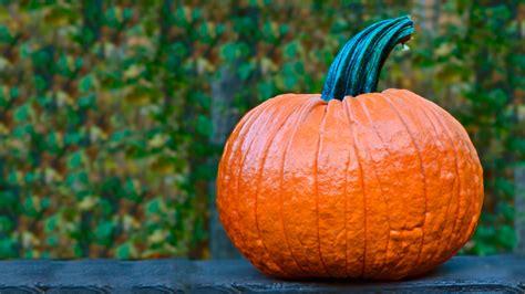 halloween jack  lantern pumpkin photoshop tutorial