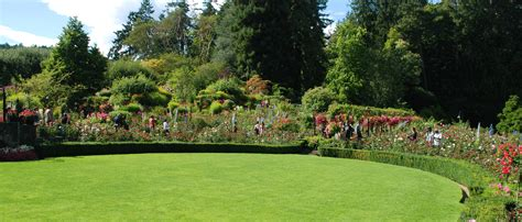 photos of landscaped gardens garden design lansdcaping glasgow landscape gardener