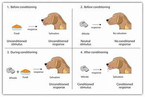 Change Psychology: Classical Conditioning | ChangeCom