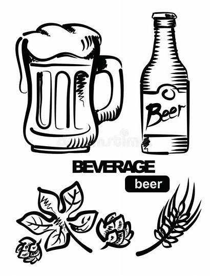 Beer Cerveza Birra Bier Illustratie Illustrazione Abbildung