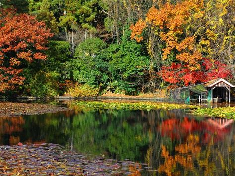 Autumn Wallpapers by Water Japan Nature Autumn Wallpaper Allwallpaper In