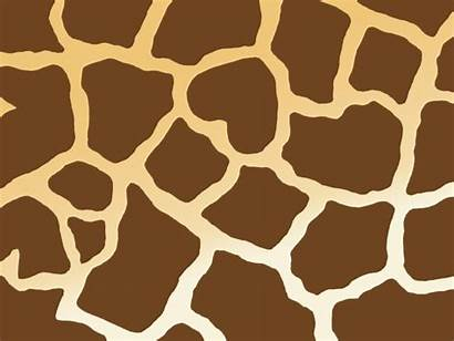 Clipart Giraffe Texture Background Pattern Clip Footprint