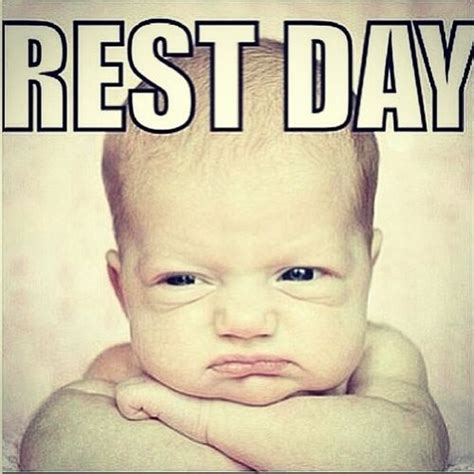 Rest Day Meme - 17 best images about routine fitness on pinterest gym outfits back exercises and garage gym