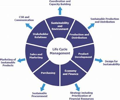 Cycle Functions Management Role Important Play Examples