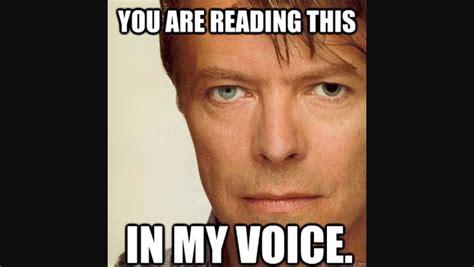 David Bowie Memes - david bowie meme david bowie photo 38844412 fanpop