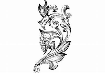 Floral Elements Ornamental Vectores Vecteezy Swirls Flourish