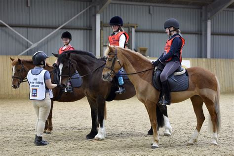 riding horse lessons aldi specialbuys clothing launch launches alongside equestrian sport rein