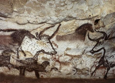 grotte de lascaux salle des taureaux grotte de lascaux la salle des taureaux panneau de la licorne premier grand taureau