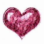 Pink Texture Roses Michielin Maio Icons Jesus