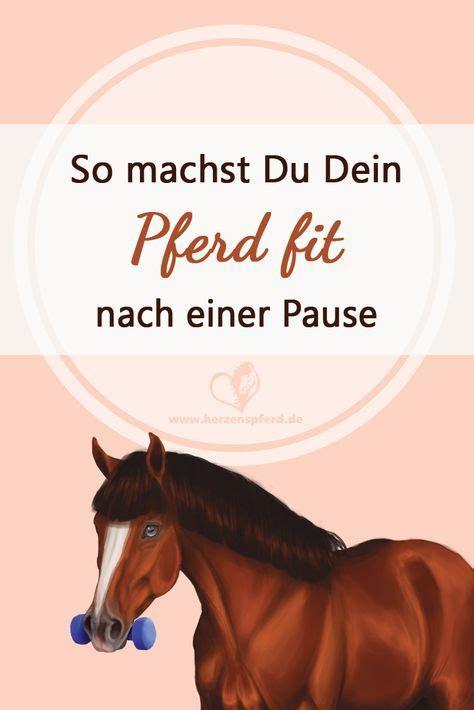 machst du dein pferd fit tipps fuer den muskelaufbau