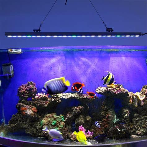 saltwater tank lights saltwater aquarium lighting vs algae some useful information