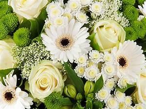 Cadeaux de naissance et fleurs avec livraison en belgique for Affiche chambre bébé avec livraison bouquet de fleurs belgique