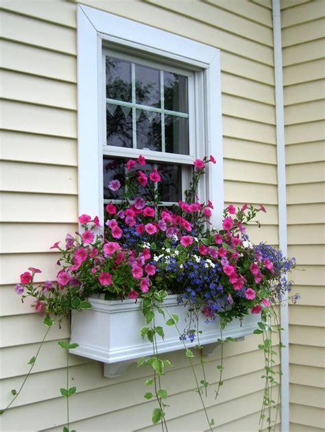 Window Planters by Best 25 Window Box Planter Ideas On Window