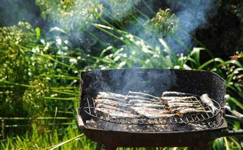 comment cuisiner des sardines sardines au barbecue comment les réussir cuisine à l 39 ouest