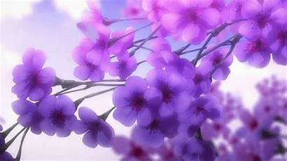 Anime Flowers Gifs Tarot Psychic Purple Flower
