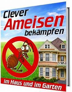 Ameisen Bekämpfen Im Garten : clever ameisen bek mpfen im haus und im garten ratgeber produkte ~ Frokenaadalensverden.com Haus und Dekorationen