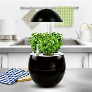 Carré Potager Gamm Vert : potager d 39 int rieur 2l nelia kitchen gardening noir ~ Dailycaller-alerts.com Idées de Décoration