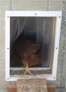 Chicken Co-op Door
