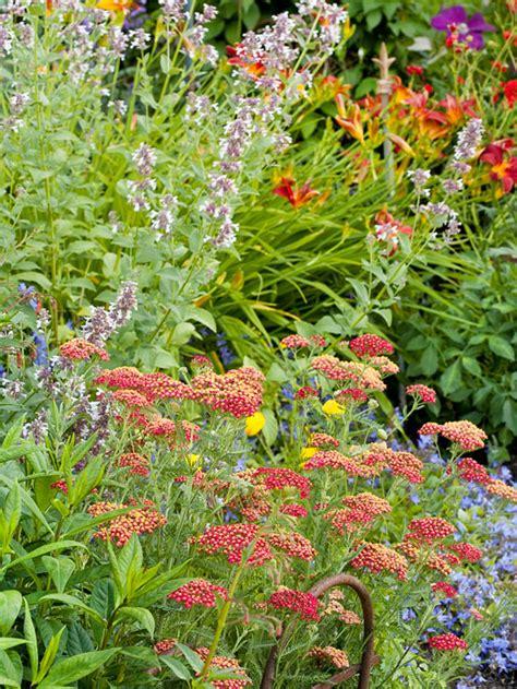 Garten Gestalten Stauden by Blumen Im Garten Gartenideen F 252 R Reizvolle Und