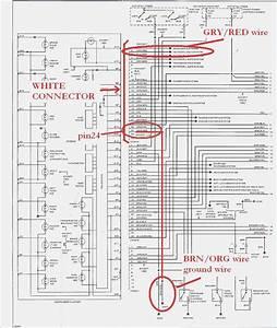 Bmw E36 Wiring Diagram  U2013 Vivresaville Com