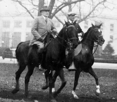 presidents  horses horse nation
