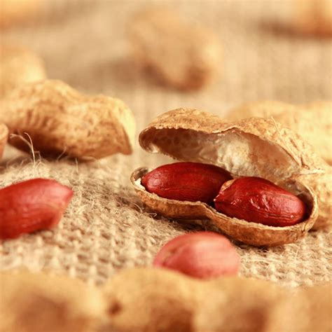 Have Scientists Found The Peanut Allergy Cure Parenting