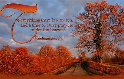 Season Everything There Every Heaven Purpose Under