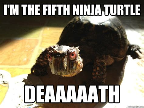 Ninja Turtle Meme - ninja turtle memes image memes at relatably com