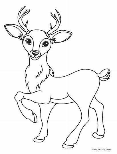 Deer Coloring Cartoon Printable Cool2bkids