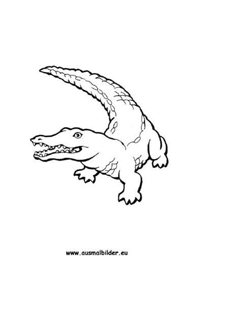ausmalbilder krokodil krokodile malvorlagen