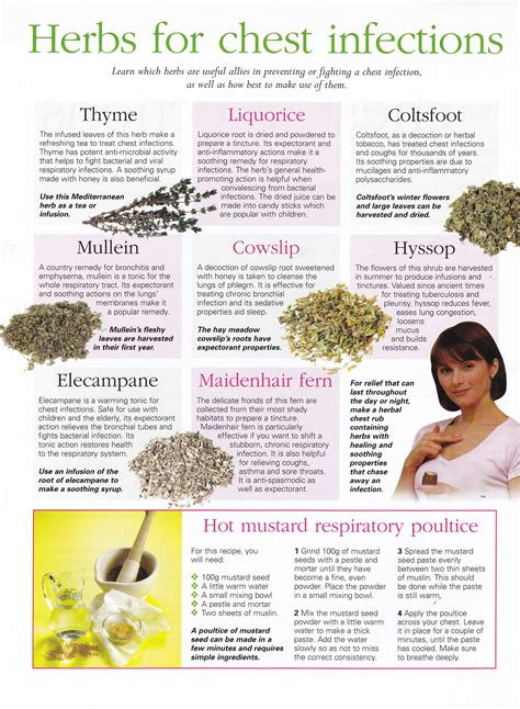Herbs Herbs For Chest Infections Health Pinterest