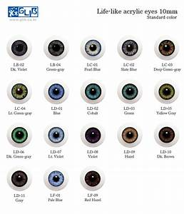Different Types Of Eyes Colors | www.imgkid.com - The ...