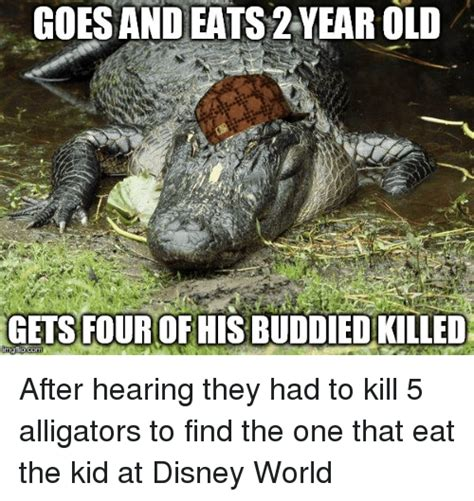 Alligator Memes - search alligators memes on me me