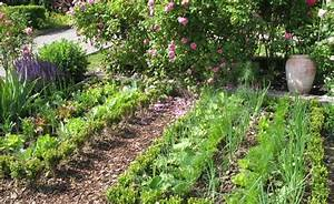 Mischkultur Im Garten : mischkultur im gem sebeet gardens and garten ~ Orissabook.com Haus und Dekorationen