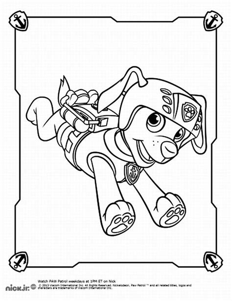 Coloring Zuma by Paw Patrol Zuma Coloring Kit Coloring Pages