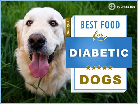dog diabetic food recipes recommended