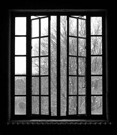 Window Rainy Rain