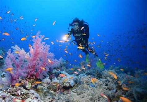 bagacum fonds marins