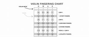 Violin String Notes  U0026 Finger Placement For Beginners